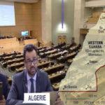 Dos países africanos piden a la Comisión de DDHH que acelere la activación de mecanismos para la vigilancia de las violaciones de DD.HH en el Sáhara Occidental.