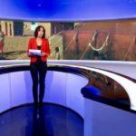 إهتمام إعلامي واسع بإنهيار وقف إطلاق النار وعودة الحرب في الصحراء الغربية